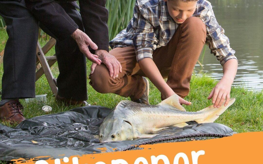 Meer jonge vrijwilligers voor woonzorgcentrum De Polbeek!